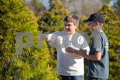 oldest-christmas-tree-farm-in-east-texas-keeps-customers-coming-back