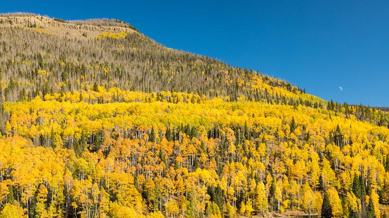 Colorado19_5D4-1551.jpg