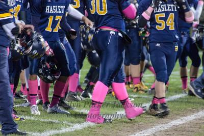 Haslett Team Spirit