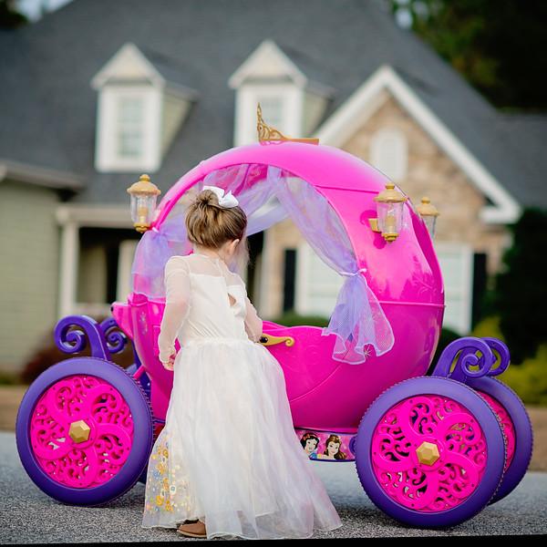 2016 Nov Daily Mom Cinderlla Carriage-2760.jpg