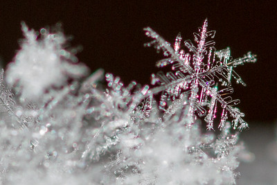 2016 02 Snowflakes & Icicles