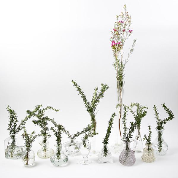 Vases-3010.jpg