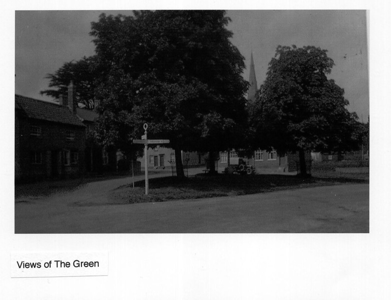 Green sign post Provided by Elizabeth Smith