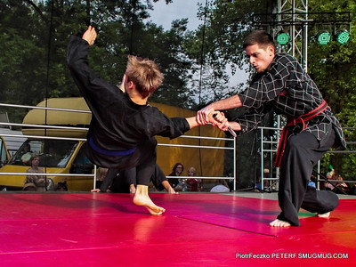 Hapkido Show summer 2015 Cracow