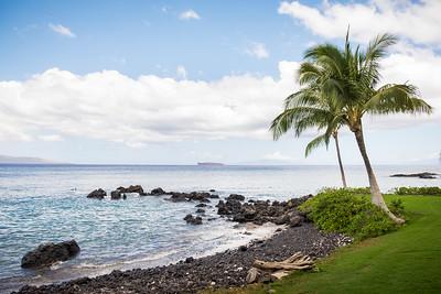 2015 Maui