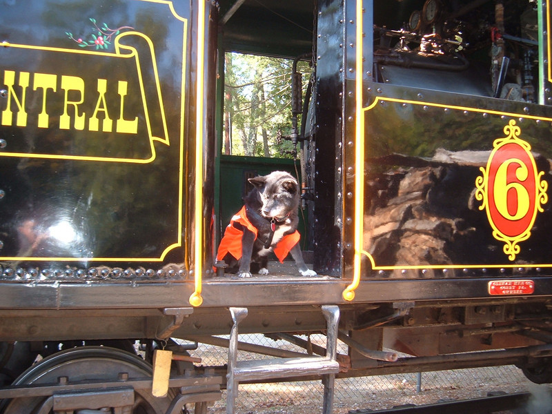 At Clark's Trading Post Reagan takes a ride on the White Mountain Central Railroads Steamer Number 6