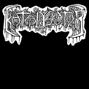 KATALYSATOR (SWE)