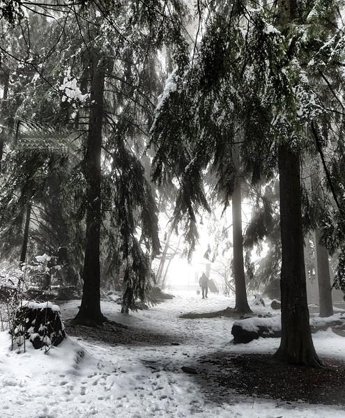 Snow day  246.jpg