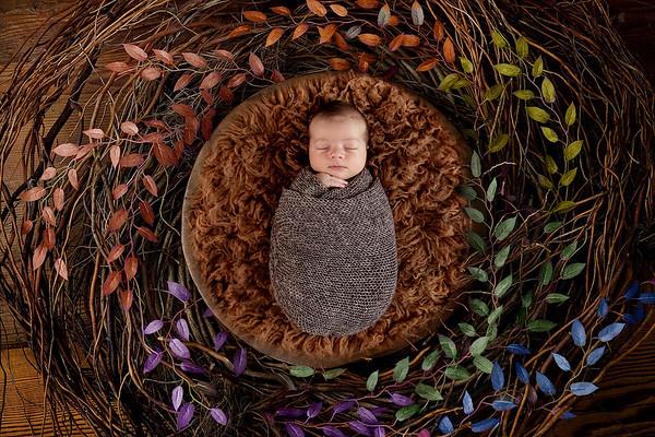 Newborn Vladimir Stefan