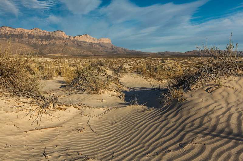 Gypsum dunes in the Salt Basin area of Guadalupe Mountain National Park