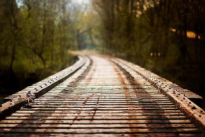 The_Path_Taken
