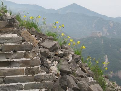 chen castle great wall camping【summer Jun】