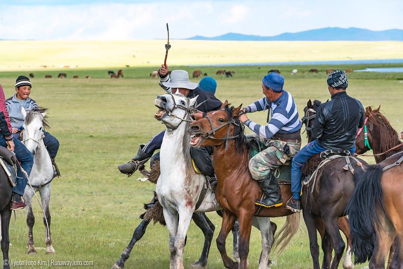 Song Kol Horse Trek-6106712.jpg