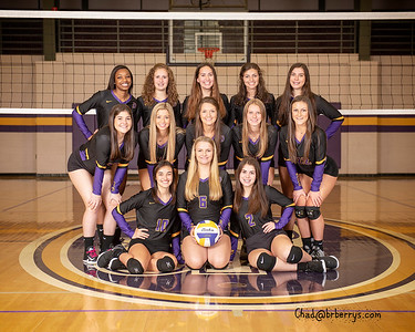 DSHS Volleyball 2019-2020