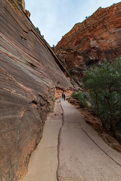 Angels-Landing-Trail-Zion2.jpg