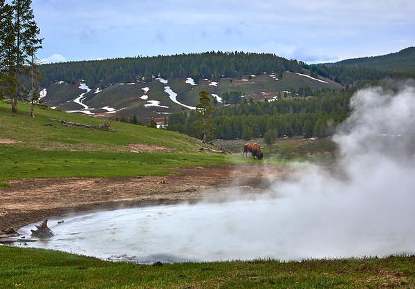 05.14 Yellowstone National Park