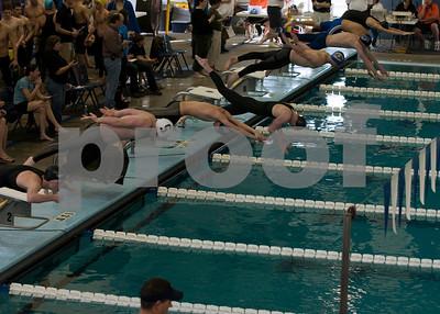 OEHS Swim & Dive 2009-2010