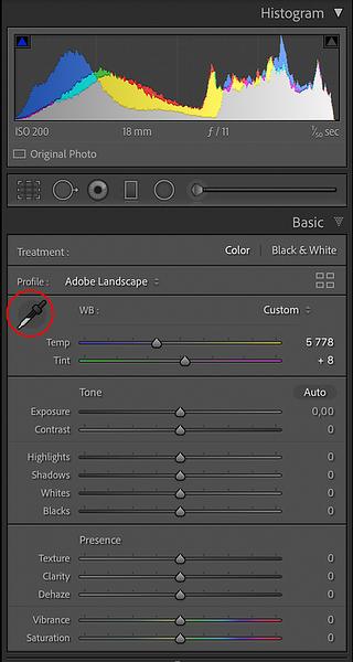 Basic Panel with the Eyedropper Tool circled