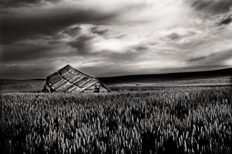 b/w, rustic, barns, grain