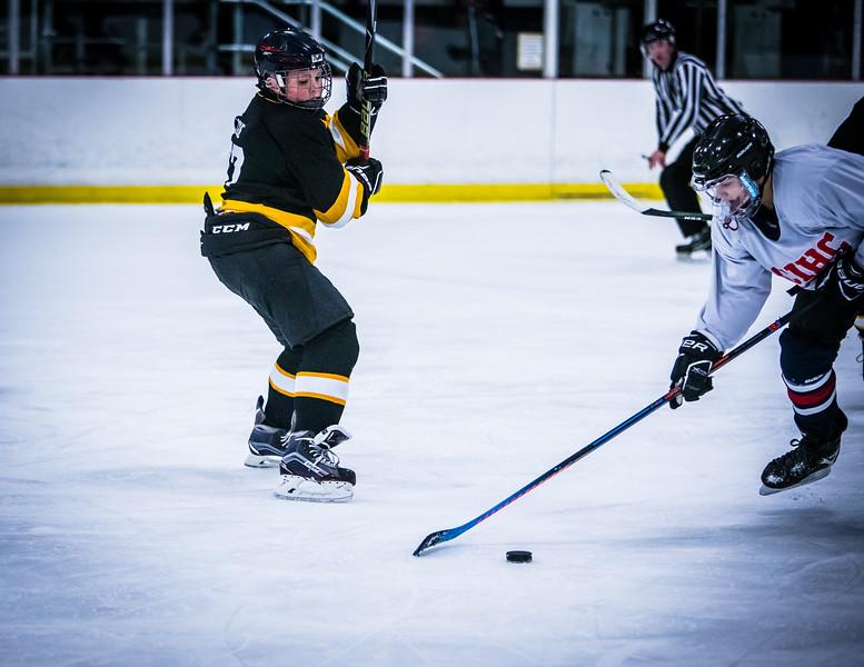 Bruins2-253.jpg
