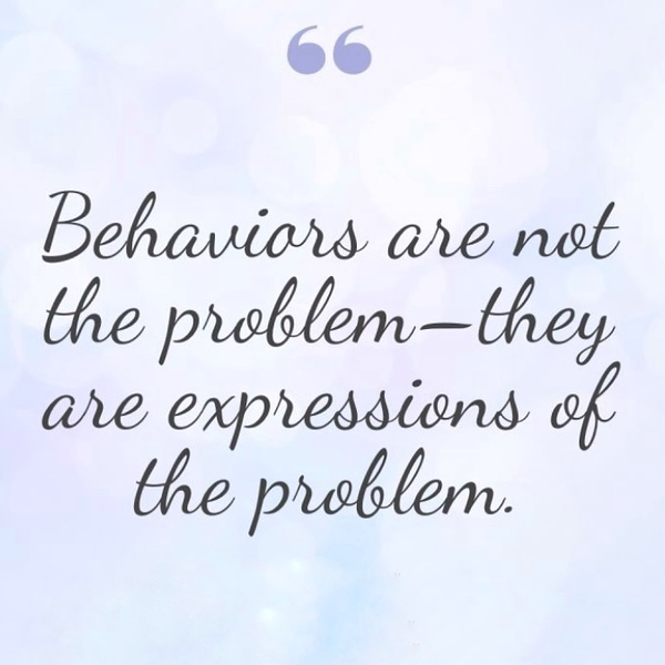 Behaviours are not the problem.jpeg