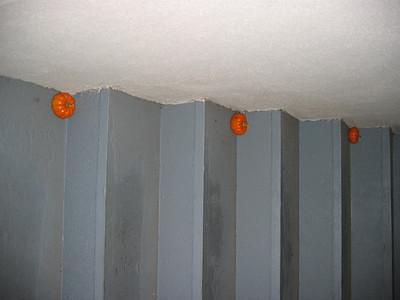Pumpkins 2004
