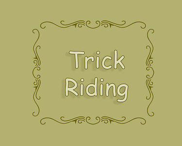 Patricia Rodeo 2018 Trick Riding