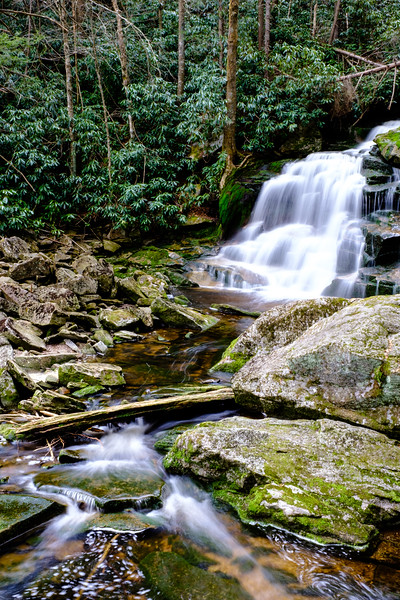 20180504-05 Blackwater Falls State Park 023.jpg