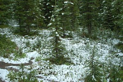Banff NP en Yoho NP deel 1