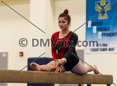 Edison/Madison/Wakefield @ Yorktown Gymnastics (08 Jan 2014)