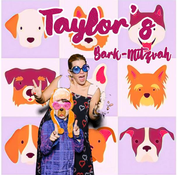 Taylors pawmitzvah-20752.jpg