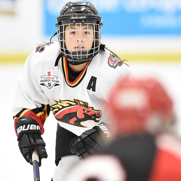 2015 Hockey