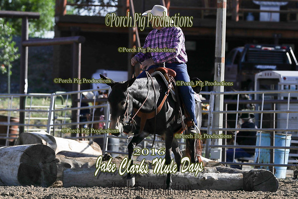 Friday Trail Class Highlights Jake clarks Mule Days 2016