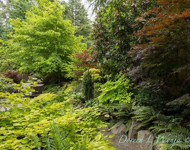 Diane Dancer garden