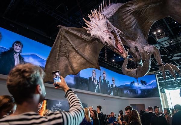 2/4/19 - Original Gringotts Wizarding Bank Launch Event