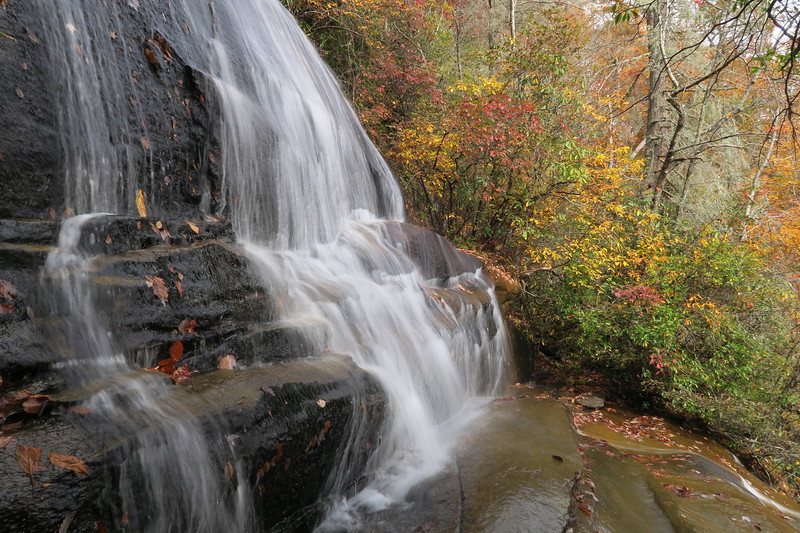 Daniel Ridge Loop Trail (#105)