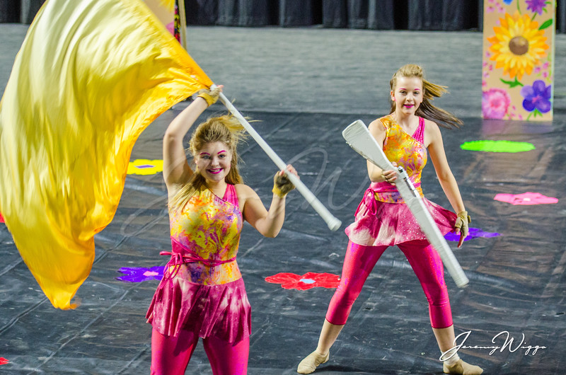 Chillhowie High School Winterguard