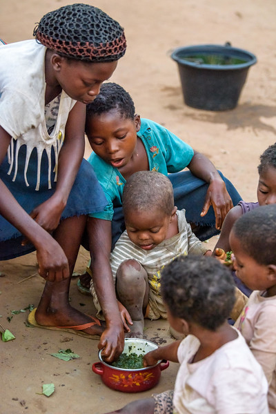 """Marie Ngalula, 14, (crocheted head covering, white top and blue skirt) and her siblings eat their one meal of the day -- bolied potato greens from their garden, cooked them without salt or oil. They eat together from one little bowl, until a neighbor comes and shares a little fufu (manioc and maize) with them.  Hunger Marie's family is desperately hungry in the days we visit them. Because her mother is sick and his father spends his days tending to her in the clinic, there is no money for food. Because there isn't any cassava flour and cornmeal to make fufu, a bread-like dish that's a Congolese staple, Marie and her siblings pick potato leaves from the garden. Marie sharpens a knife on a rock and uses it to chop the leaves into small pieces. She holds a bunch tightly in her left hand and runs the knife through them.  Her cousin, also named Marie Ngalula, pulls some wood from a pile and arranges it between three rocks that will hold the pot. She yanks some thatch from the roof and uses it for kindling. Because they also have no oil or salt, the recipe is uncomplicated.   The greens are stuck in a pot of water and boiled until they become soft. They look very much like spinach. As luck would have it, a kind neighbor sends a few drops of oil which Marie mixes with the water. Her grandfather sends a little fufu, a huge treat for the 6 nearly empty bellies that share the small pot of greens. Later Marie will tell her mother during a visit to the clinic, """"We've gone three days without eating anything but potato leaves. We have to endure the hunger. The hunger never kills someone."""" Unfortunately, she's wrong. Marie and her siblings also go to the CFS where, thanks to a newly introduced feeding program gives them each a bowl of porridge made from soy, maize, peanuts, maringa and sugar.  Marie lives with her father, Alexandre Tshimanga, her mother, Ntumba Kalombo Antoinette and her brothers and sisters: 1-Kena Tshimanga, 12 2-Kankonde Moise, 10 3-Munamba Angel, 8 4-Musungayi"""