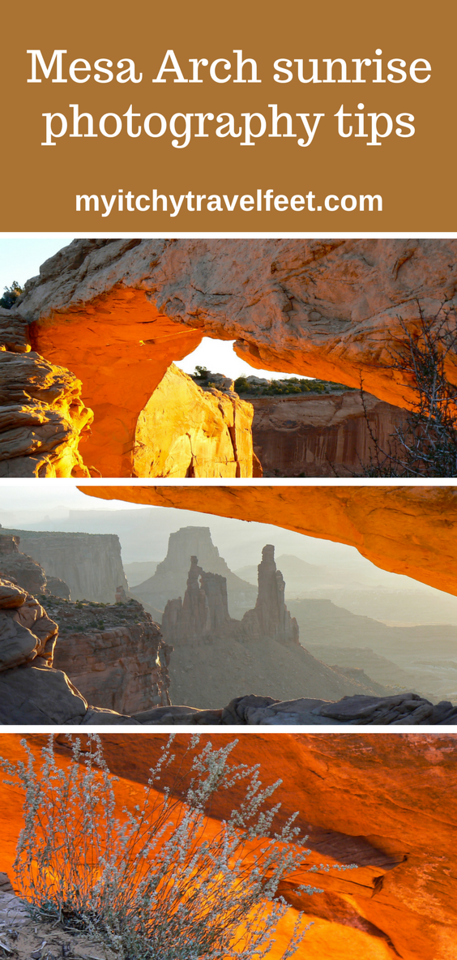 Mesa Arch sunrise photography tips. Photo collage, the sunlight reflects an orange glow on Mesa Arch, stone formations in the background, wildflowers against an orange background.