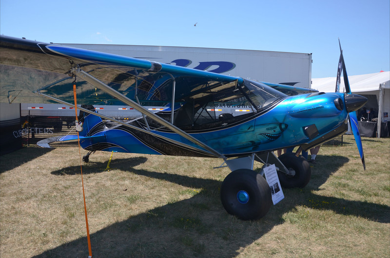 Interesting paint on this Carbon Cub