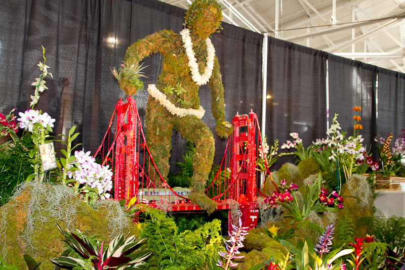 SF_Orchid_Show-04.jpg