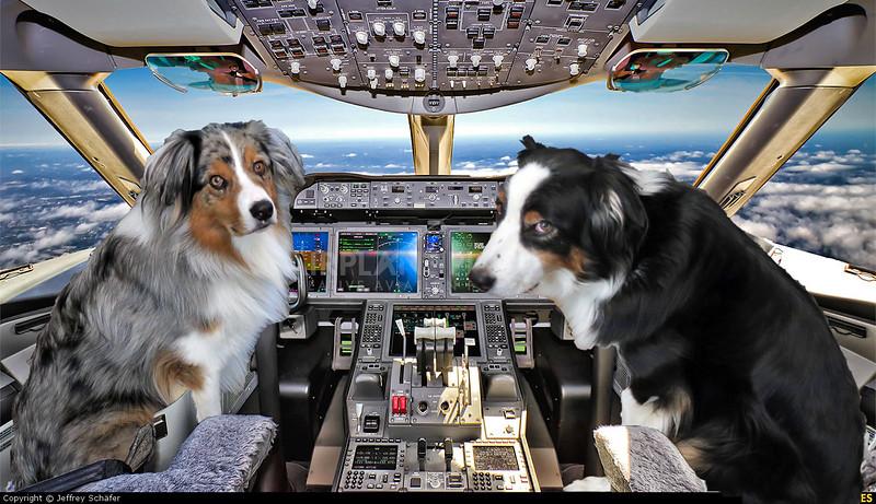 AirlineCockpit.GaWy.jpg