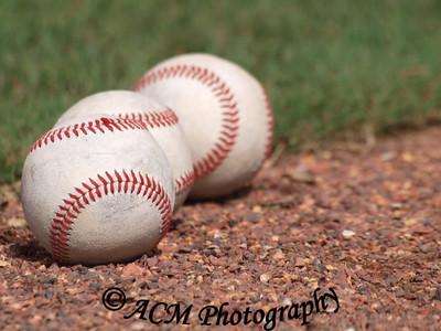 Charleston Riverdogs Baseball Camp 2013