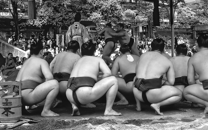 Sumo Festival_011.jpg