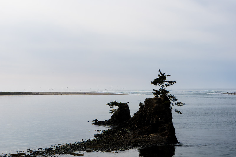 oregon coast vacation photography 2019-27.jpg
