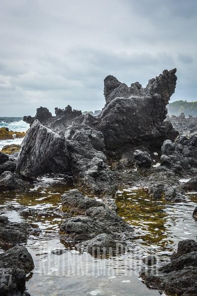 Maui110.jpg