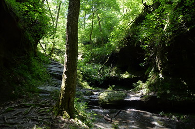 Southern IL - Little Grand Canyon - Shawnee National Forest