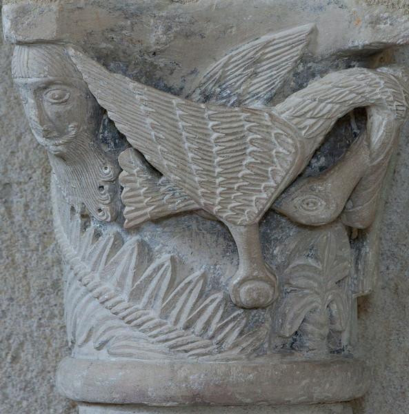 Plaimpied, Saint-Martin Abbey Capital, Pelican