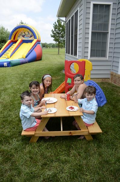 2015-07-11 picnic