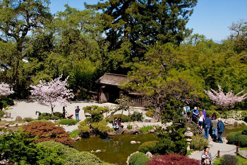 Hakone_Gardens-06.jpg